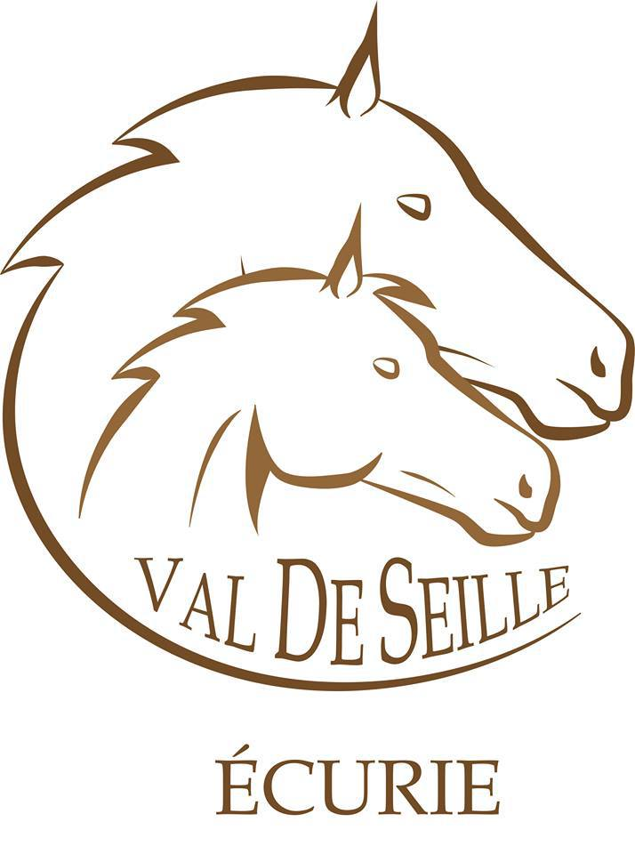 ecurie, val de seille, pension, elevage, poney, chevaux