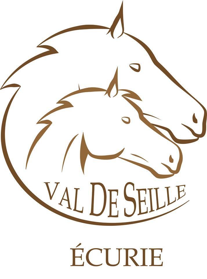 ecurie, val de seille, pension, elevage, poney, chevaux